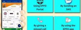 check-epf-balance